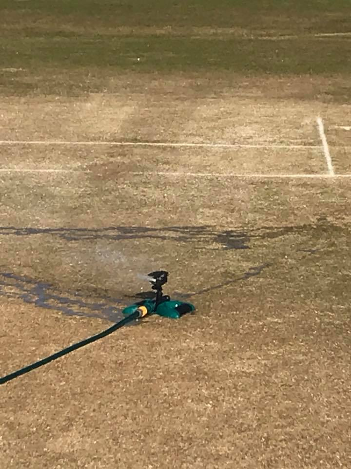 watering under 9s and under 11s wickets