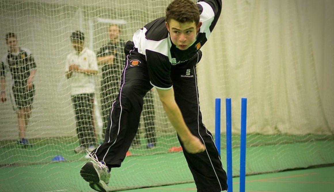 cricket 724623_640